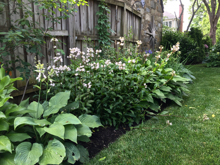 PHOTO-Part shade border