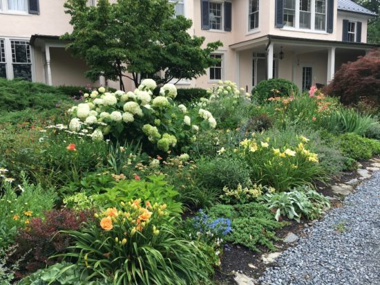 PHOTO-Summer perennial border