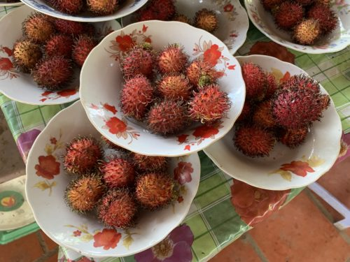 Bowls of fresh rambutans