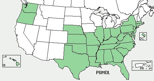 USDA Plants Database kudzu