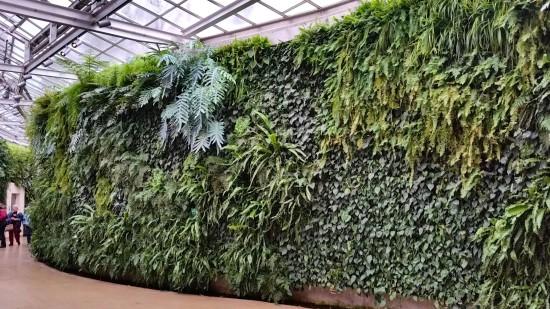 Photo: Longwood Gardens Green Wall/herebydesign.net