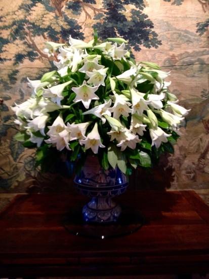 Chen.White lilium (1)