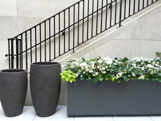 Small Garden Ideas From The Kips Bay Show House Here By Design