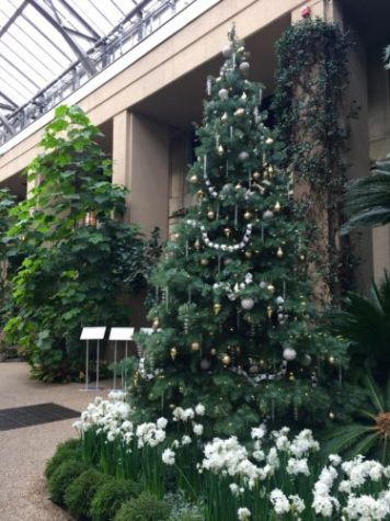 Longwood Gardens Gets Dressed Up For The Holidays Here By Design