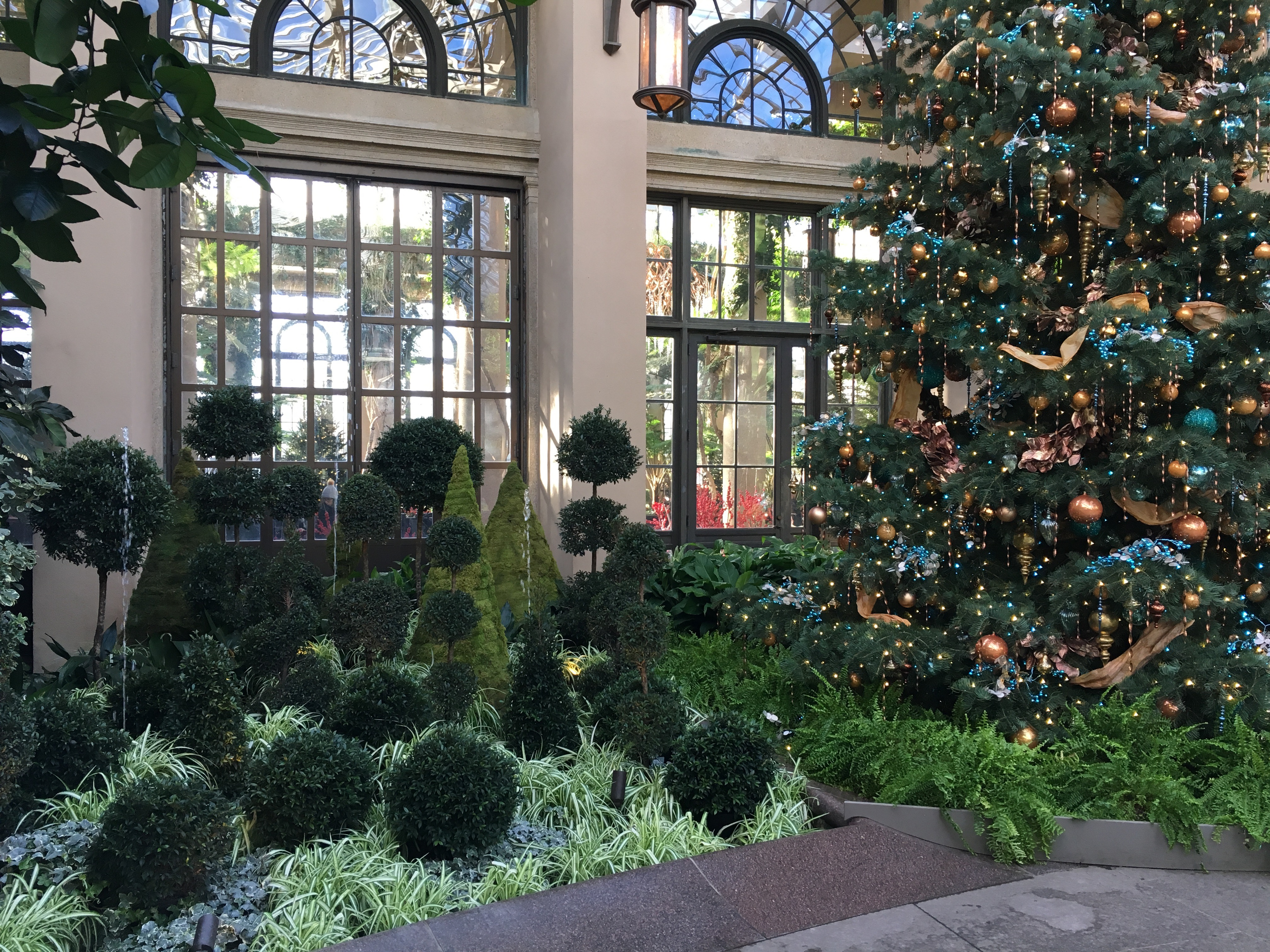 Img 6901 here by design for Longwood gardens christmas 2017