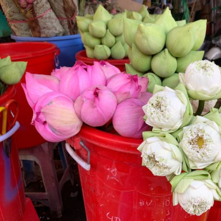 Fresh lotuses at Ho Thi Ky Flower Market